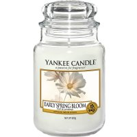 Yankee Candle Duftkerze Early Spring Bloom 623g
