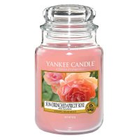 Yankee Candle Duft Sun-Drenched Apricot Rose 623g