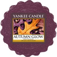 Yankee Candle Wax Melts - Autumn Glow - Duftwachs