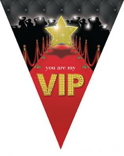 Wimpelkette - VIP-Party - 5 m