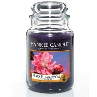 yankee candle black plum blossom 623g kaufen. Black Bedroom Furniture Sets. Home Design Ideas