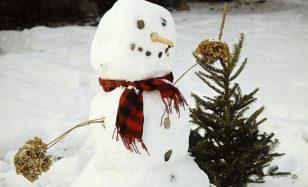 Kindergeburtstag Schnee – Schneeparty