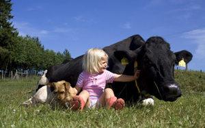 Kuh(le) Kinderparty: feiern wie auf dem Bauernhof