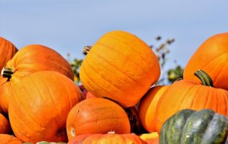 Party im Herbst