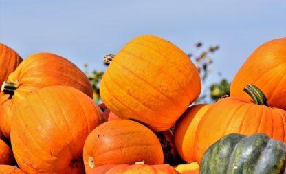Herbst – Jahreszeit für fast jede Mottoparty