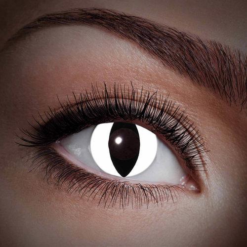 UV Kontaktlinsen Katze