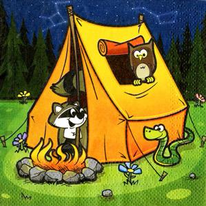 Großartig Übernachtungsparty Im Zelt