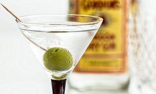 Zur Cocktailparty deinen Martini – geschüttelt und nicht gerührt!