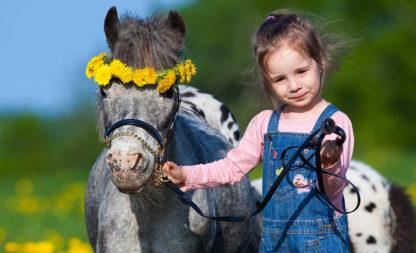 My little Pony zum Geburtstag