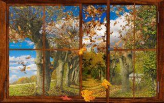 Fensterblick Herbst
