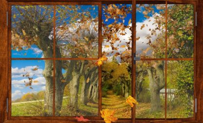 Stürmischer Herbst