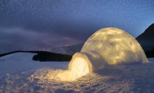 Polarnacht für den Nachwuchs