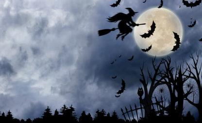 Verhextes Wochenende mit der Blair Witch