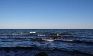 Muschelsucher und Strandläufer
