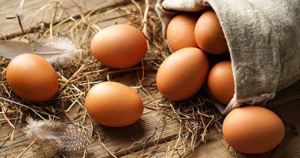 Bauernhof Party mit frischen Eiern