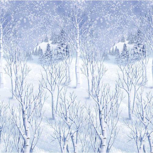 Wandeko Winterlandschaft
