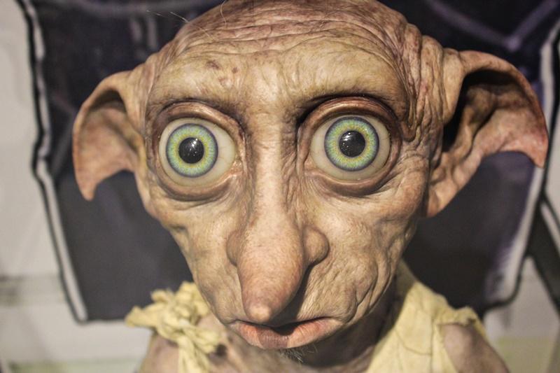 Hauself Dobby